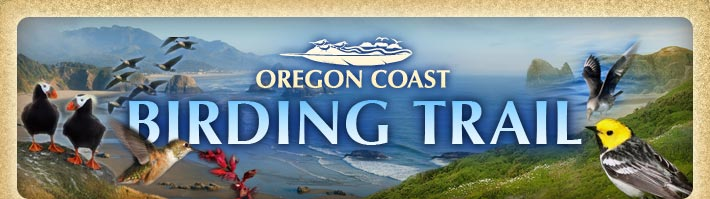 Oregon Coast Birding Trail